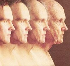 proceso-envejecimiento