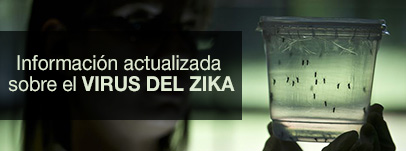 pagina_especial_sobre_zika