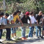 jovenes-ayudan-en-la-recuperacion-de-la-habana-tras-el-tornado-580x387