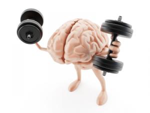 entrenamiento-del-cerebro-300x225