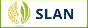 SLAN internacional