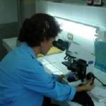 Laboratorio-Análisis