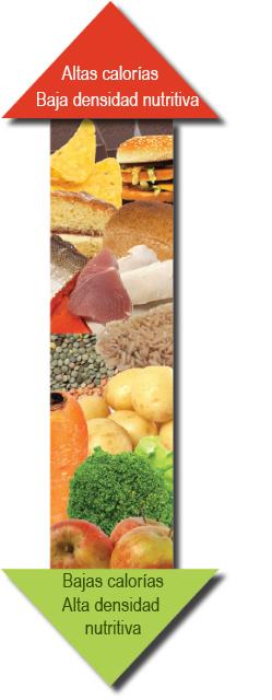 Cuenta nutrientes, no calorías