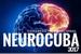 1105-neurocuba