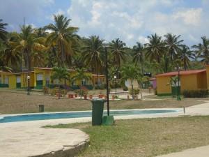 los cocos 1