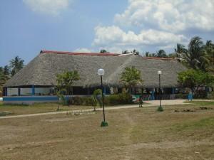 los cocos 2
