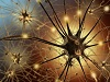 AdobeStock_33939265.jpg